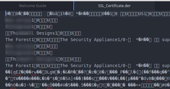 DER format certificate gibberish